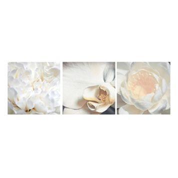 Nexxt Shutter Canvas Carnation, Orchid & Water Lily Wall Art Set