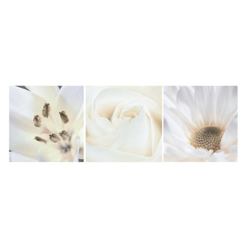 Nexxt Shutter Canvas Lily, Rose & Daisy Wall Art Set