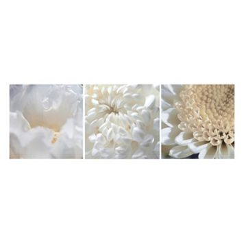 Nexxt Shutter Canvas Tulip, Spidermum & Chrysanthemum Wall Art Set