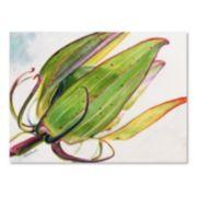 Trademark Fine Art Flower Pod Canvas Wall Art