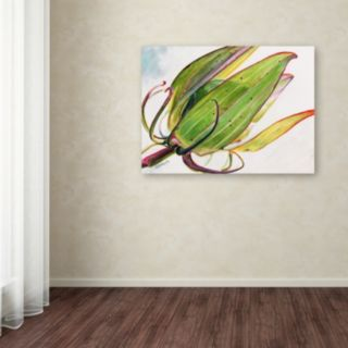Trademark Fine Art Flower Pod Canvas Wall Art