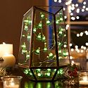 LED Christmas Lights Category Image