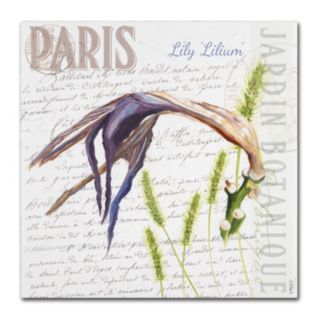 Trademark Fine Art Paris Botanique Lily Canvas Wall Art