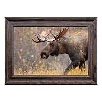 Reflective Art The Bully Framed Wall Art