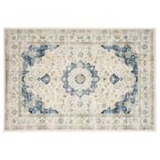 Safavieh Evoke Jayme Distressed Framed Floral Rug
