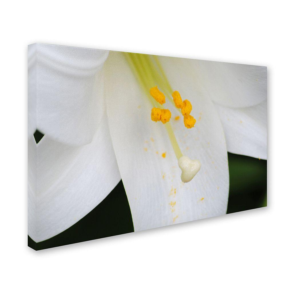 Trademark Fine Art Adore You Canvas Wall Art
