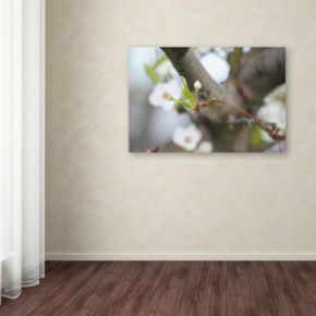 Trademark Fine Art Before Bloom Canvas Wall Art