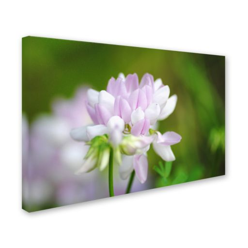 Trademark Fine Art Calm Heart Canvas Wall Art