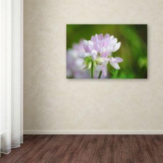 Trademark Fine Art Calm Heart Canvas Wall Art