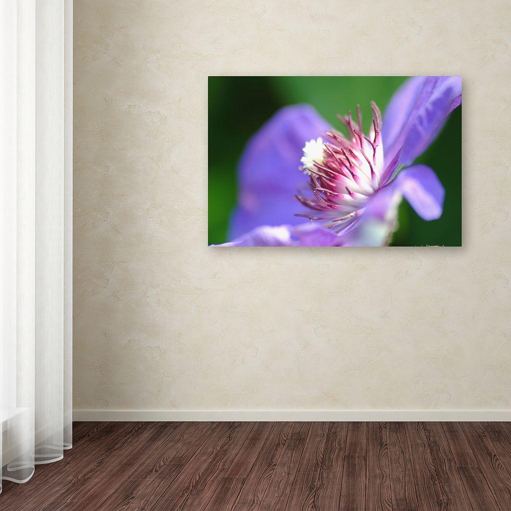 Trademark Fine Art Clarity Canvas Wall Art