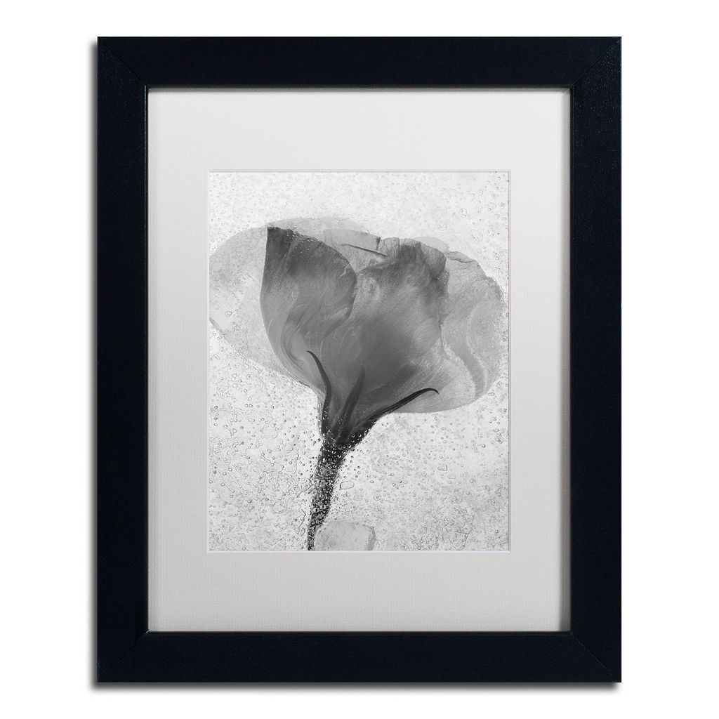 Trademark Fine Art Flowers on Ice Framed Wall Art