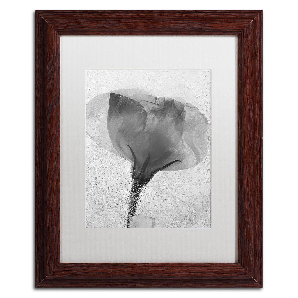 Trademark Fine Art Flowers on Ice BW-2 Matted Framed Wall Art