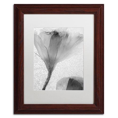 Trademark Fine Art Flowers on Ice-13 Framed Wall Art