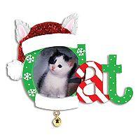PolarX Ornaments 1.5