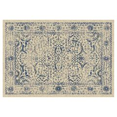 Safavieh Evoke Rachel Light Framed Floral Rug