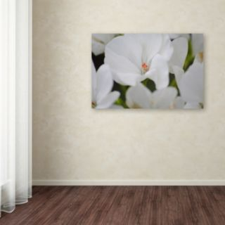 Trademark Fine Art Clustered Canvas Wall Art