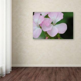 Trademark Fine Art Devine Feel Canvas Wall Art