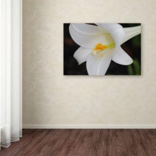 Trademark Fine Art Easter Canvas Wall Art