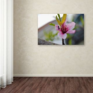 Trademark Fine Art Expressive Individuality Canvas Wall Art