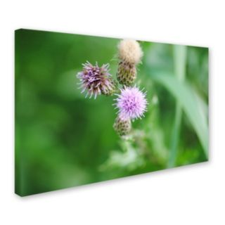 Trademark Fine Art Fearless Beauty Canvas Wall Art