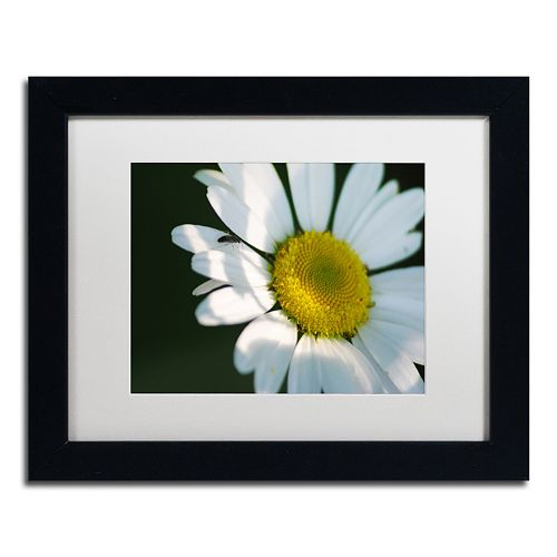 Trademark Fine Art Hidden in Shadows Black Framed Wall Art