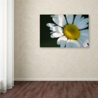 Trademark Fine Art Hidden in Shadows Canvas Wall Art