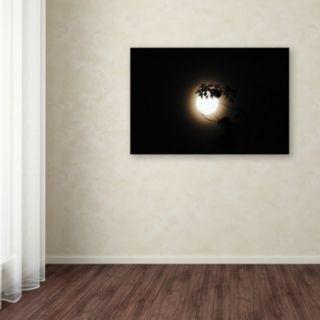 Trademark Fine Art Howl Canvas Wall Art