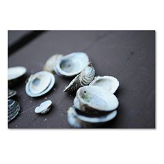 Trademark Fine Art Lei Canvas Wall Art