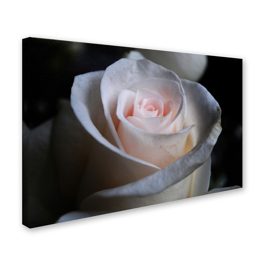 Trademark Fine Art Loyal Star Canvas Wall Art