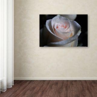 Trademark Fine Art Loyal Star Canvas Wall Art