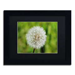 Trademark Fine Art Make a Wish Black Framed Wall Art