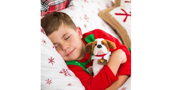 The Elf On The Shelf 174 Elf Pets 174 A Saint Bernard Tradition