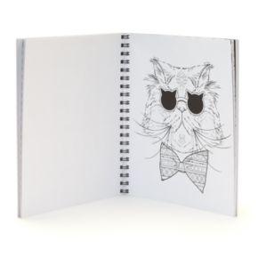 Crazy Cat Lady ColorArt Book by Publications International, Ltd.