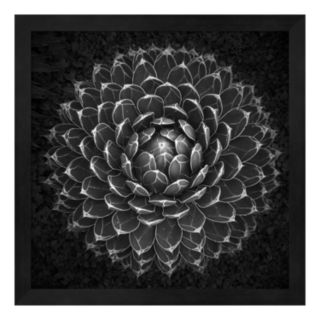 Metaverse Art Agave Victoria Framed Wall Art