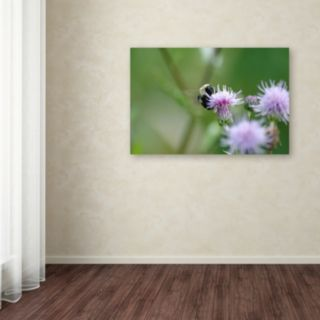Trademark Fine Art Meant to Be Canvas Wall Art