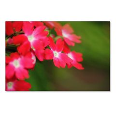 Trademark Fine Art Paired Ornament Canvas Wall Art