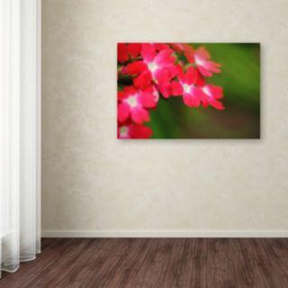 Trademark Fine Art Paired Ornament Canvas Wall Art