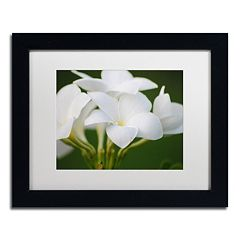 Trademark Fine Art Picture Perfect Framed Wall Art