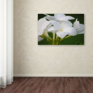 Trademark Fine Art Picture Perfect Canvas Wall Art