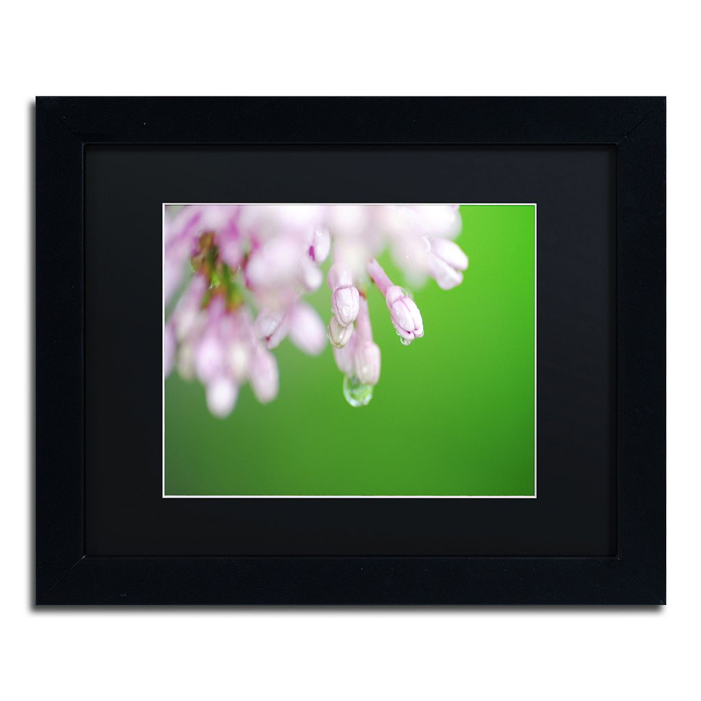 Trademark Fine Art Pure Framed Wall Art