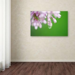 Trademark Fine Art Pure Canvas Wall Art