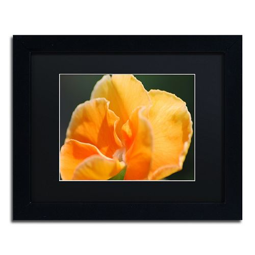 Trademark Fine Art Simple Compassion Framed Wall Art