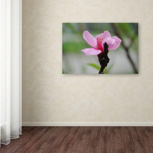 Trademark Fine Art Simplicity Canvas Wall Art