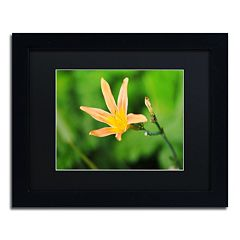 Trademark Fine Art Sweet Spice Framed Wall Art