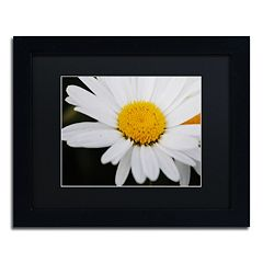 Trademark Fine Art Sweet Splendor Framed Wall Art