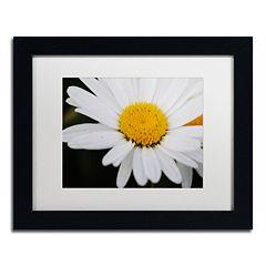 Trademark Fine Art Sweet Splendor Framed Wall Art