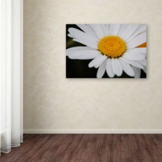 Trademark Fine Art Sweet Splendor Canvas Wall Art