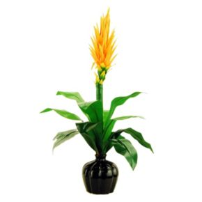Designs by Lauren Artificial Bromeliad Plant