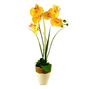 Designs by Lauren Artificial Phalaenopsis Orchid & Grass Plant