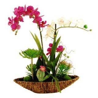 Designs by Lauren Artificial Tropical Succulents & Phalaenopsis Orchids Arrangement